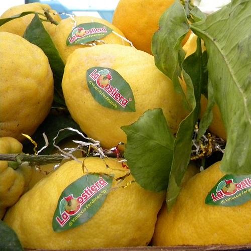 Limoni non trattati