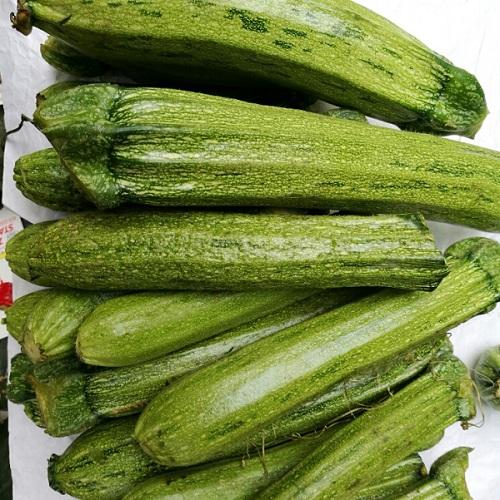 """Zucchine chiare """"Albenga"""""""
