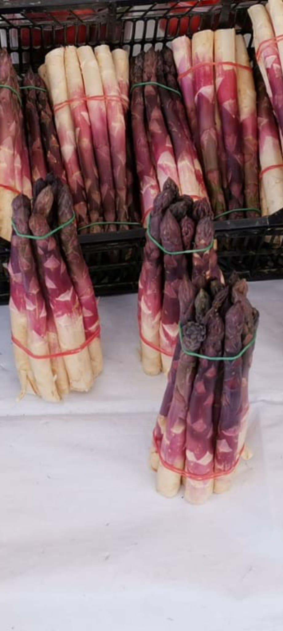 asparago viola albenga