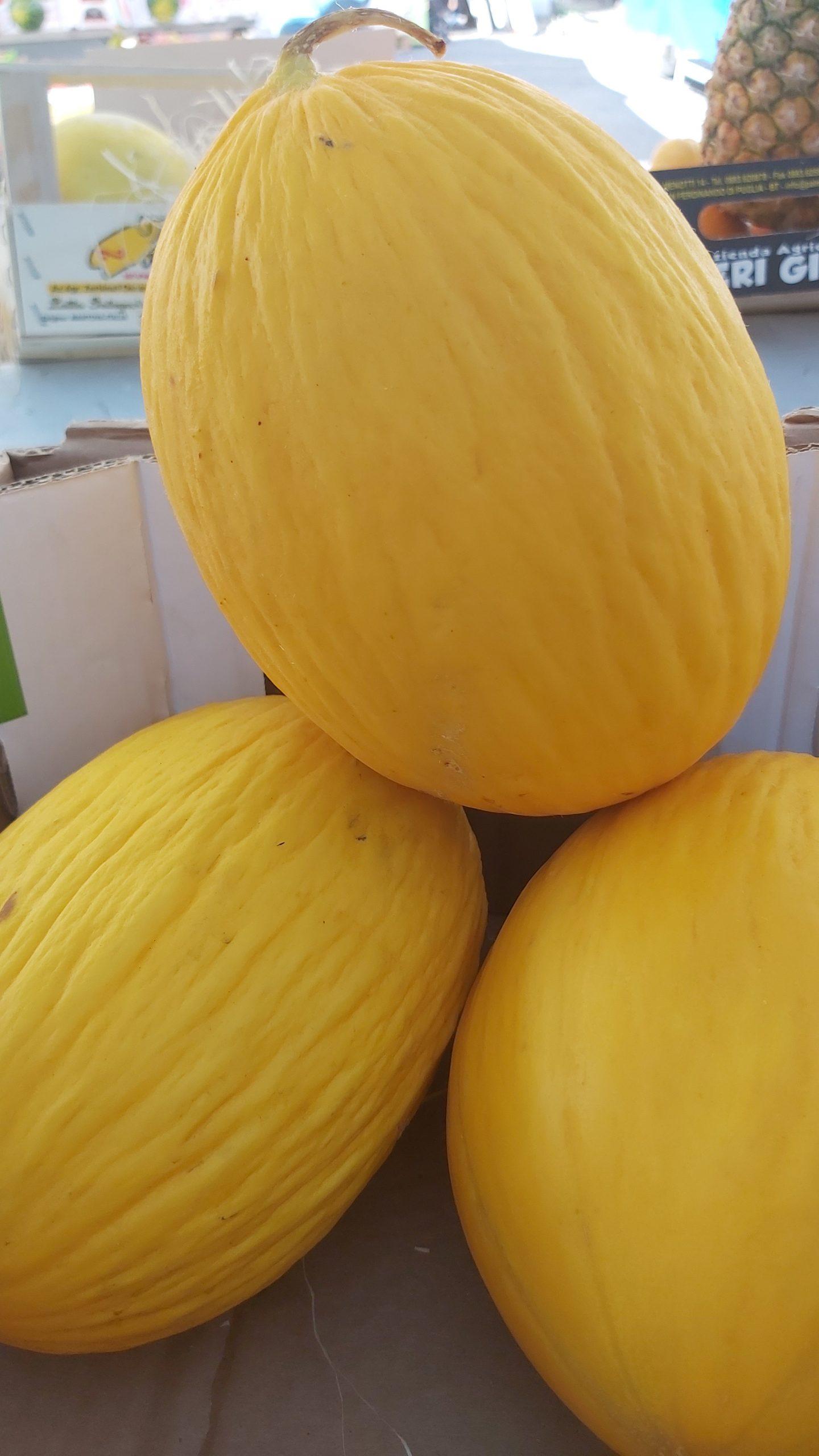 Melone giallo SICILIA  dolcissimo